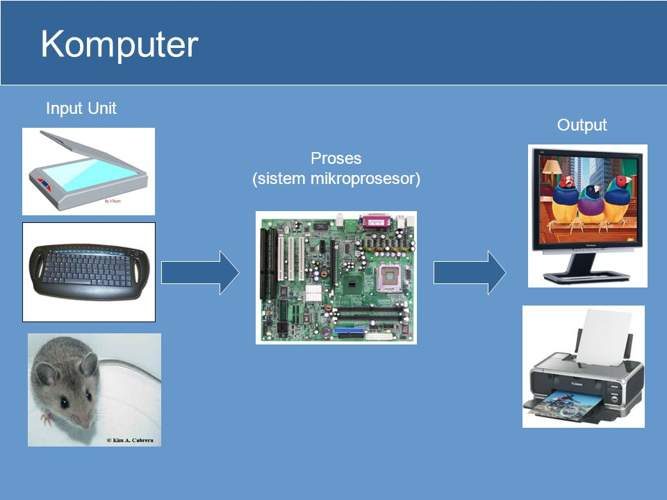 (sistem mikroprosesor)