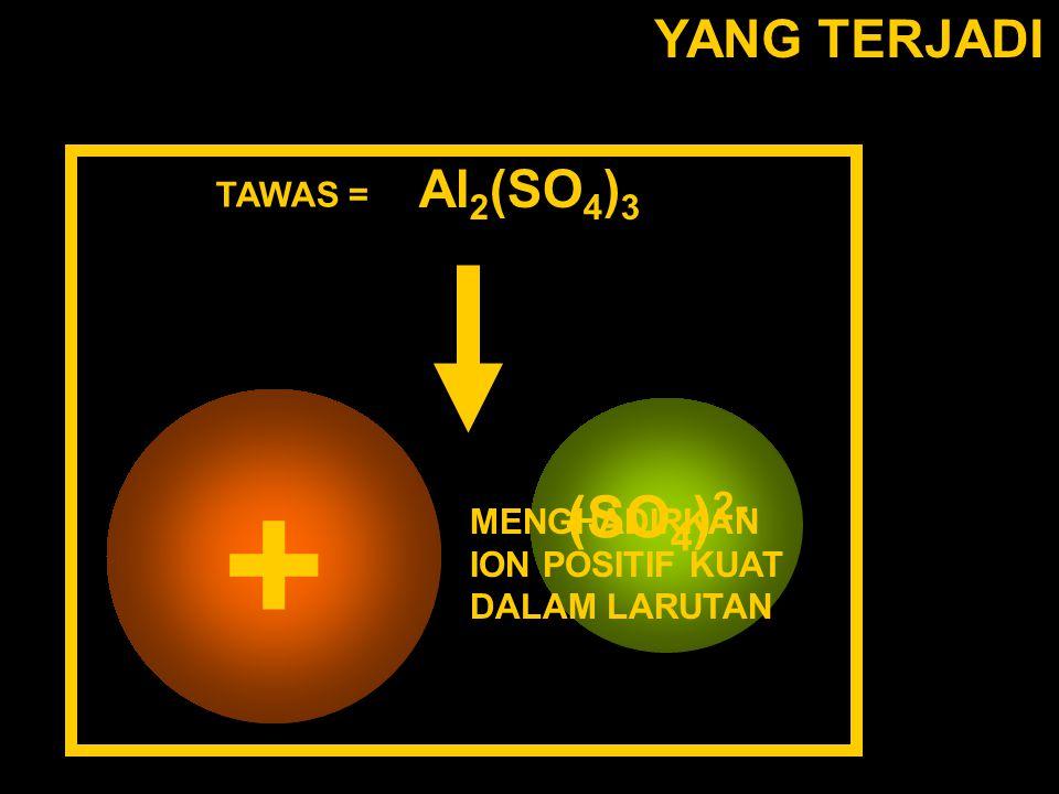 + (SO4)2- Al(H2O6)3+ YANG TERJADI Al2(SO4)3 TAWAS =
