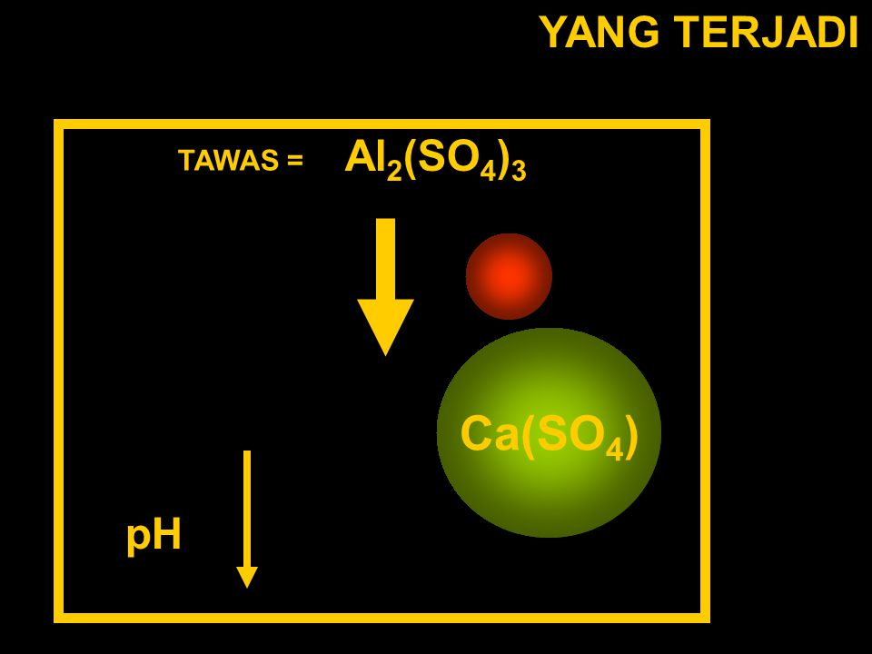 YANG TERJADI Al2(SO4)3 TAWAS = Al(H2O6)3+ (SO4)2- Ca(SO4) pH