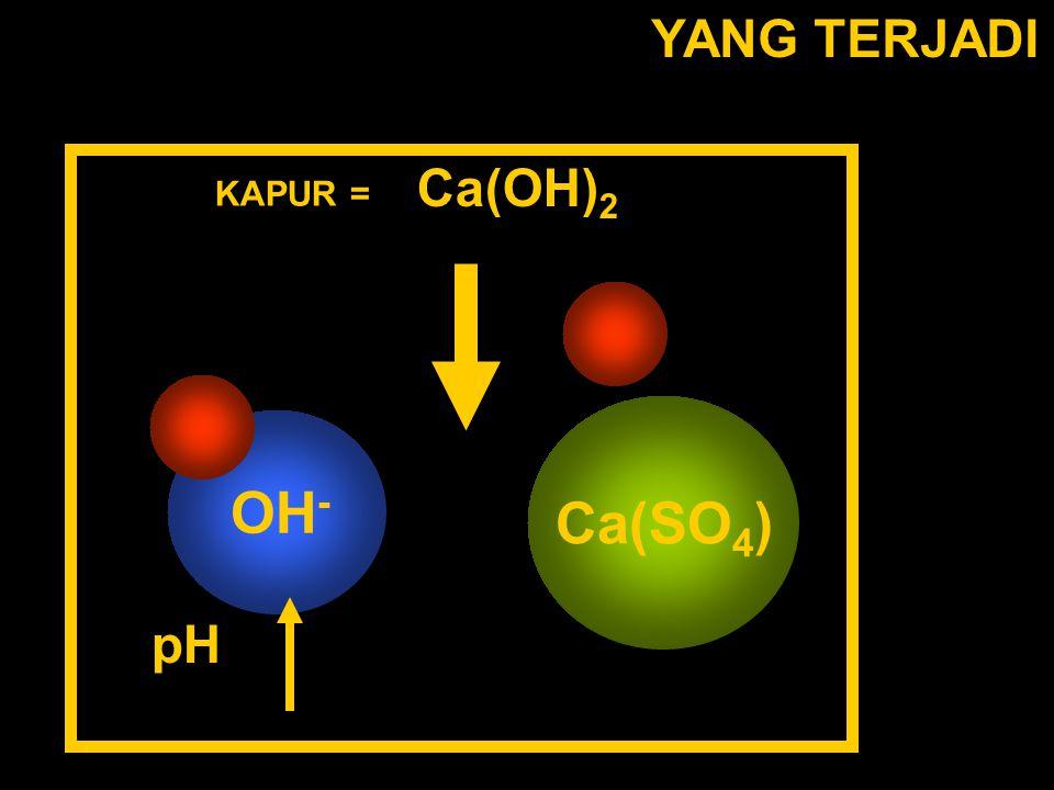 YANG TERJADI Ca(OH)2 KAPUR = OH- Ca(SO4) pH