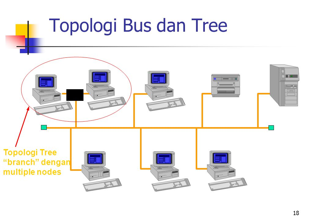 Topologi Bus dan Tree Topologi Tree branch dengan multiple nodes