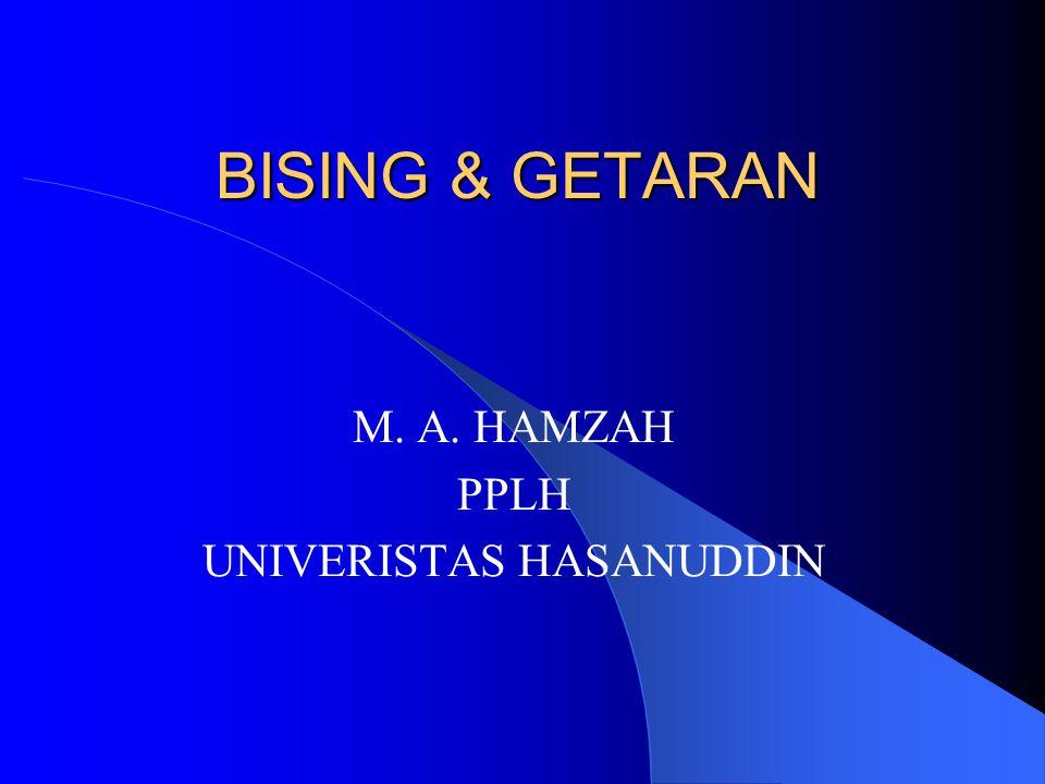 M. A. HAMZAH PPLH UNIVERISTAS HASANUDDIN