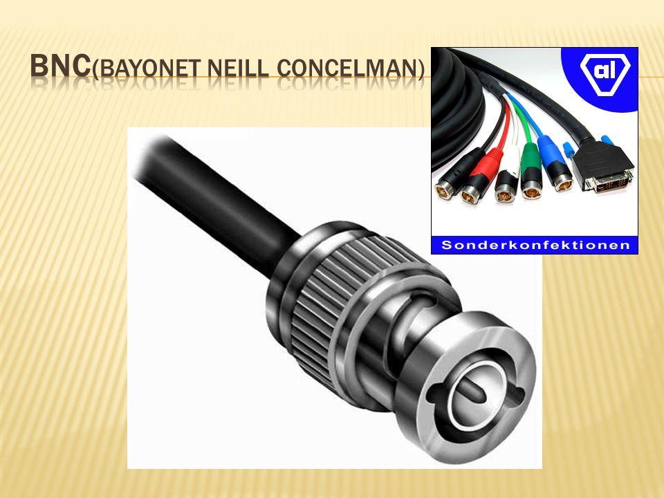 BNC(Bayonet Neill Concelman)