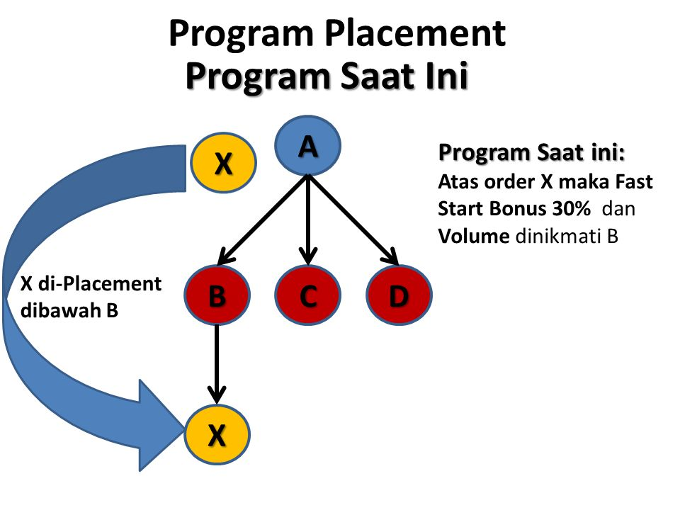 Program Placement Program Saat Ini