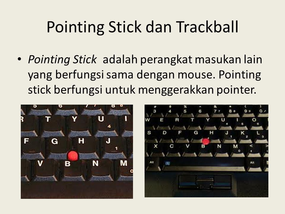 Pointing Stick dan Trackball