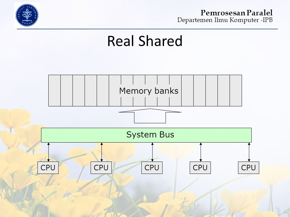 Real Shared Memory banks System Bus CPU CPU CPU CPU CPU