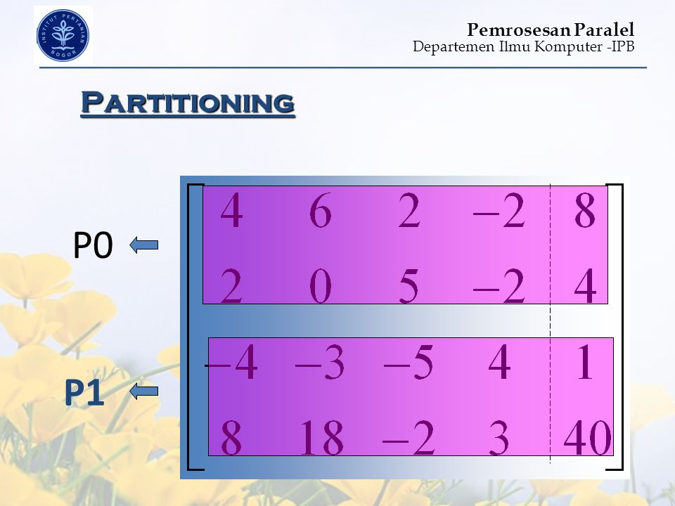Partitioning P0 P1