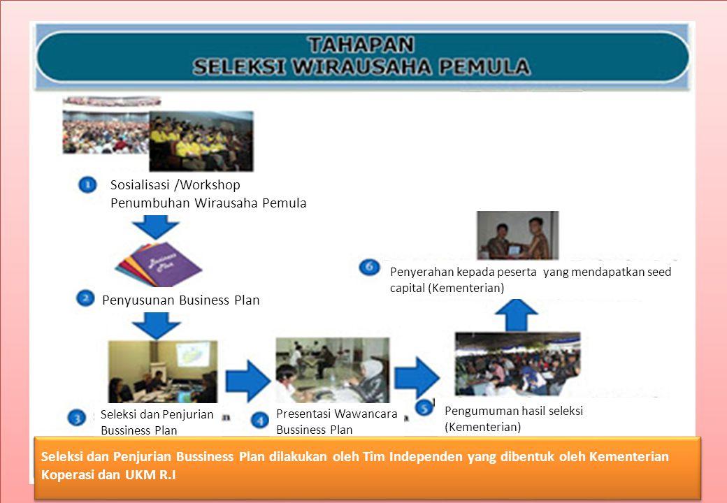 Sosialisasi /Workshop Penumbuhan Wirausaha Pemula