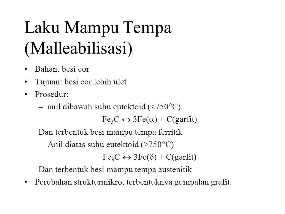Laku Mampu Tempa (Malleabilisasi)
