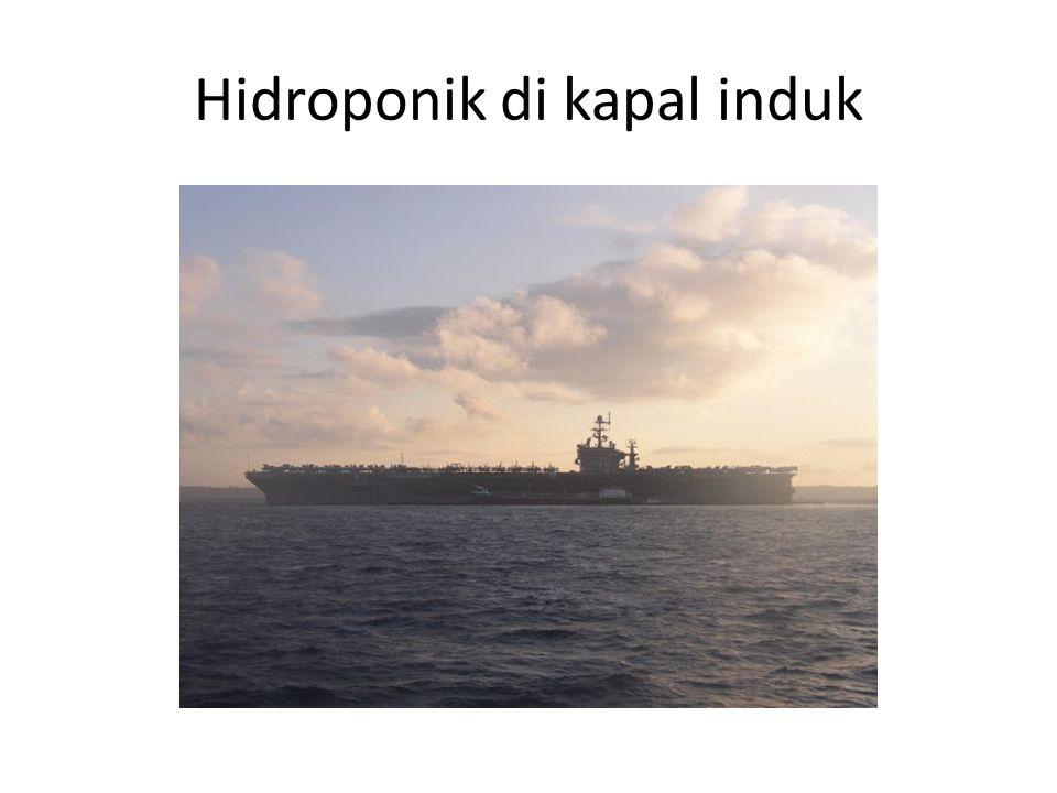 Hidroponik di kapal induk