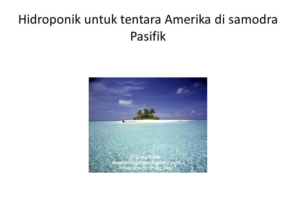 Hidroponik untuk tentara Amerika di samodra Pasifik