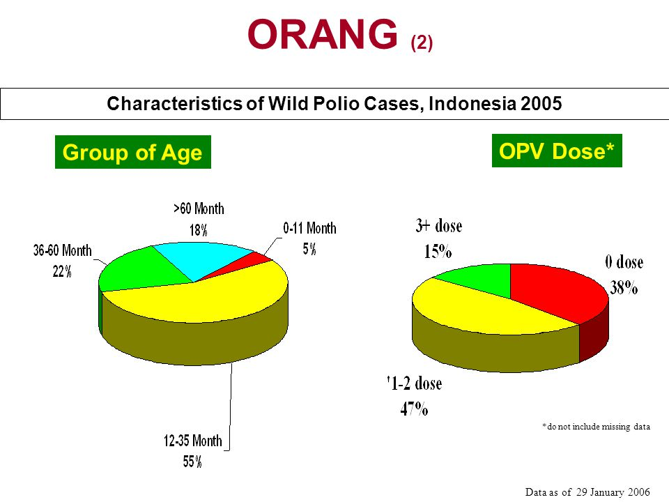 Characteristics of Wild Polio Cases, Indonesia 2005