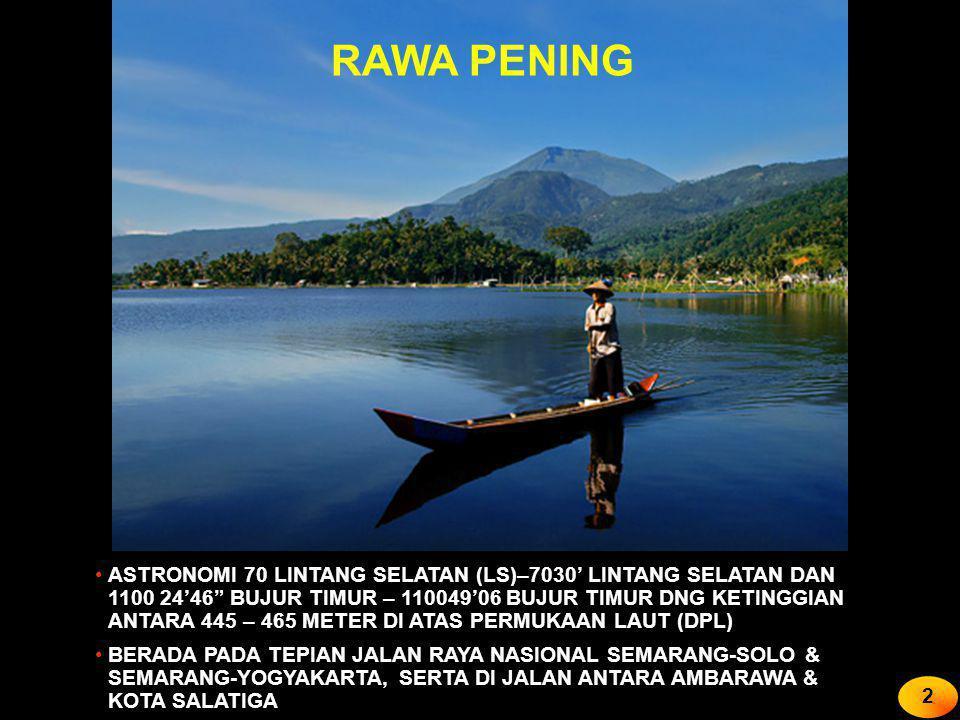 RAWA PENING