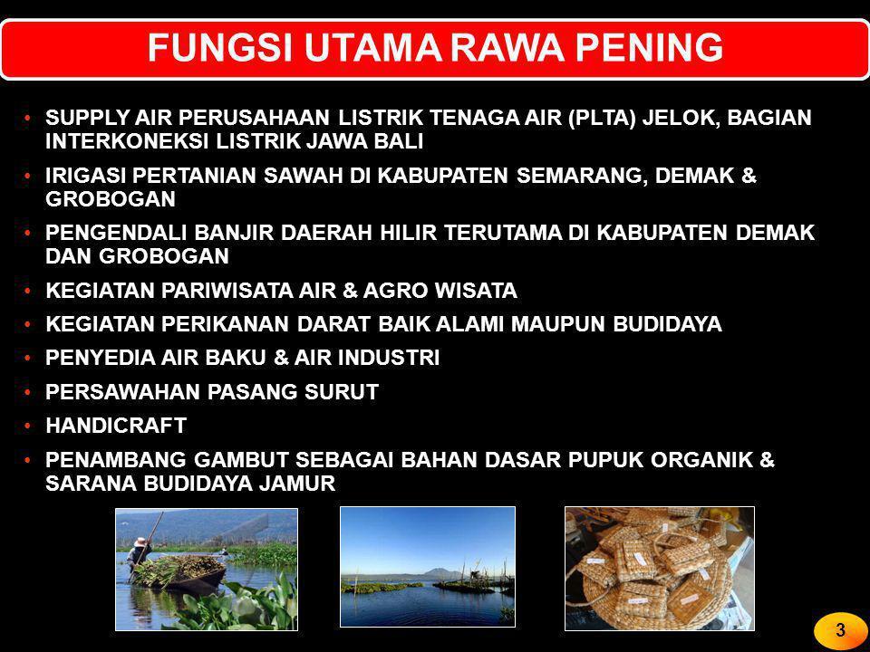FUNGSI UTAMA RAWA PENING