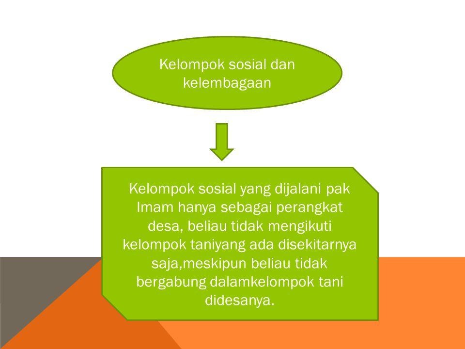 Kelompok sosial dan kelembagaan