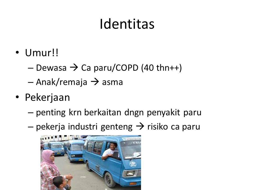 Identitas Umur!! Pekerjaan Dewasa  Ca paru/COPD (40 thn++)
