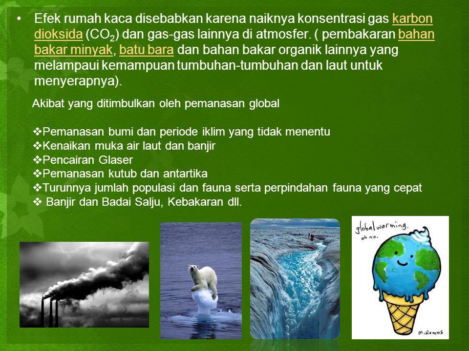 Efek rumah kaca disebabkan karena naiknya konsentrasi gas karbon dioksida (CO2) dan gas-gas lainnya di atmosfer. ( pembakaran bahan bakar minyak, batu bara dan bahan bakar organik lainnya yang melampaui kemampuan tumbuhan-tumbuhan dan laut untuk menyerapnya).