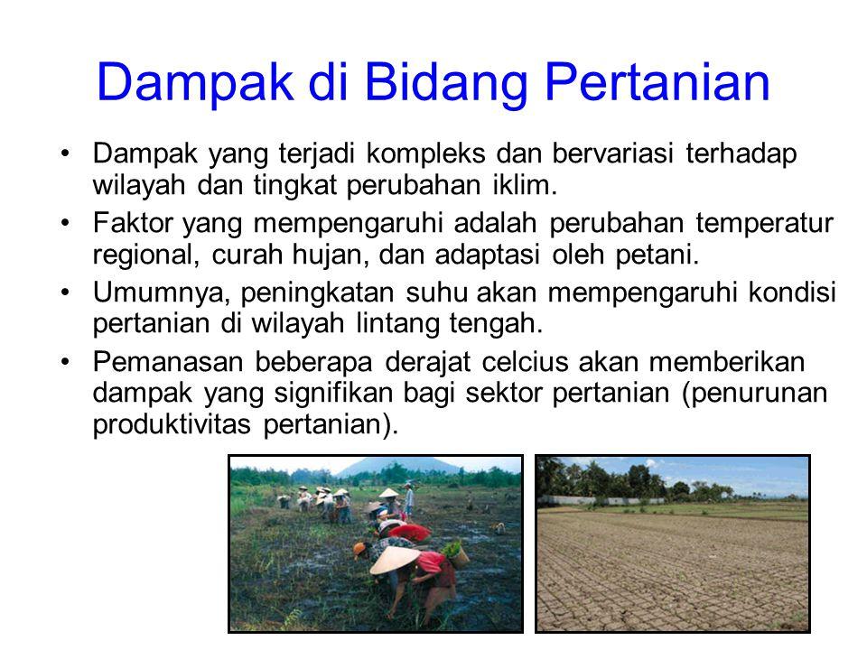Dampak di Bidang Pertanian
