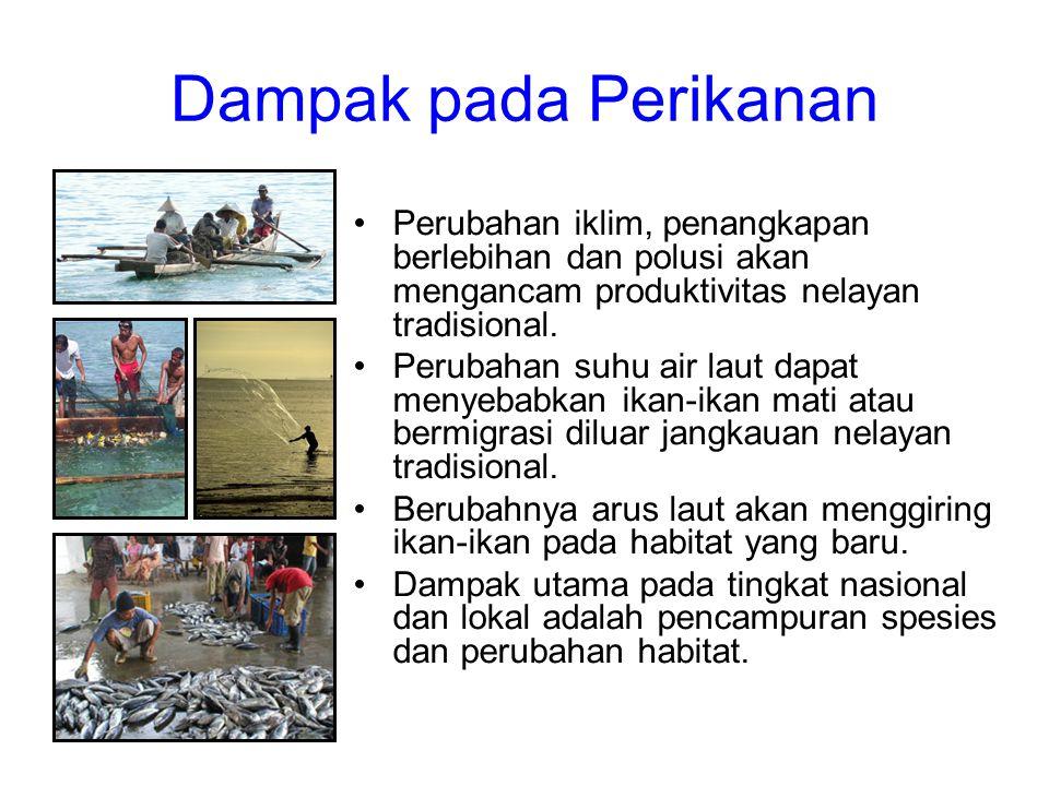 Dampak pada Perikanan Perubahan iklim, penangkapan berlebihan dan polusi akan mengancam produktivitas nelayan tradisional.