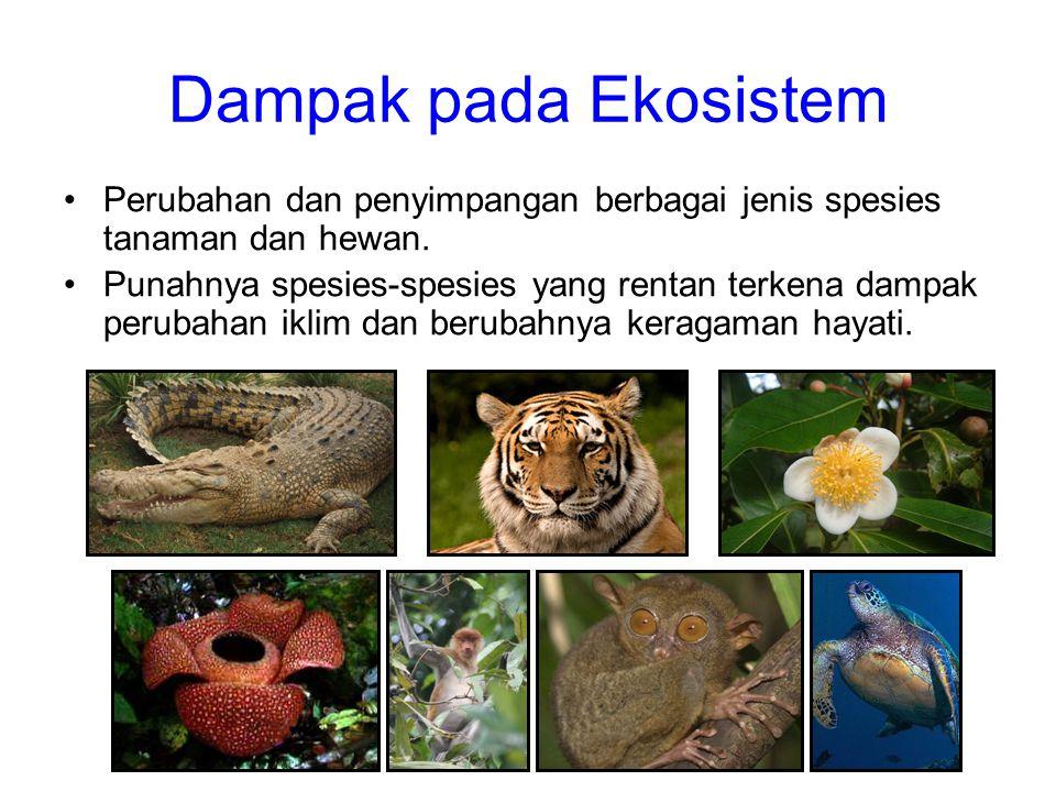Dampak pada Ekosistem Perubahan dan penyimpangan berbagai jenis spesies tanaman dan hewan.