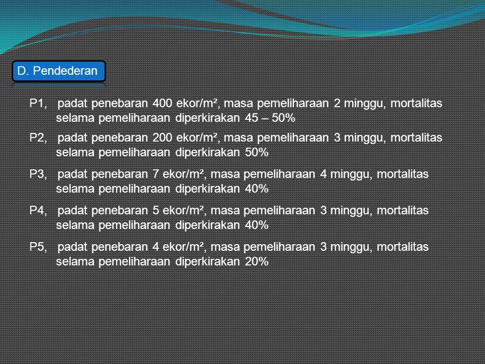 D. Pendederan P1, padat penebaran 400 ekor/m², masa pemeliharaan 2 minggu, mortalitas. selama pemeliharaan diperkirakan 45 – 50%
