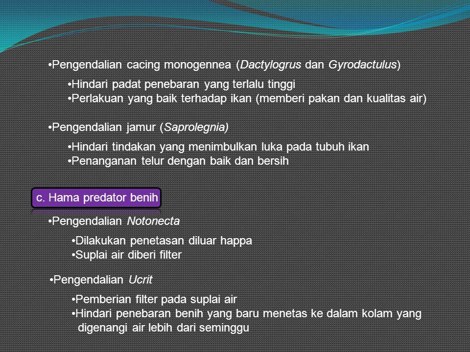 Pengendalian cacing monogennea (Dactylogrus dan Gyrodactulus)