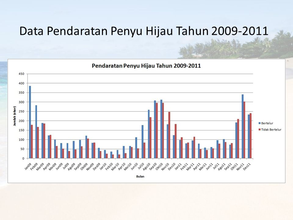 Data Pendaratan Penyu Hijau Tahun 2009-2011