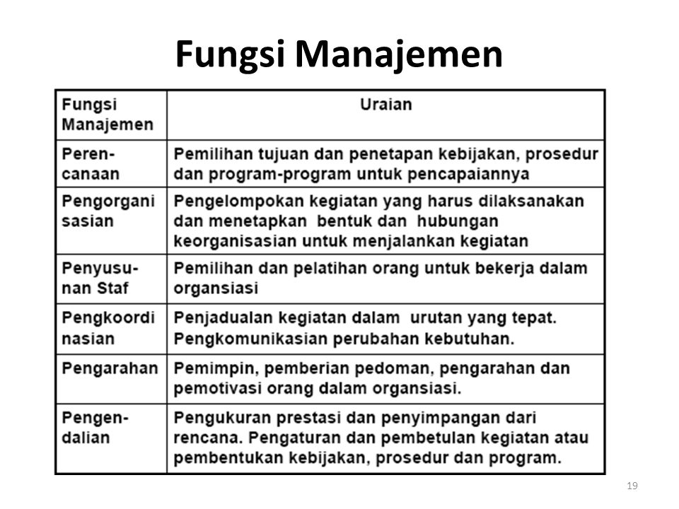 Fungsi Manajemen 19