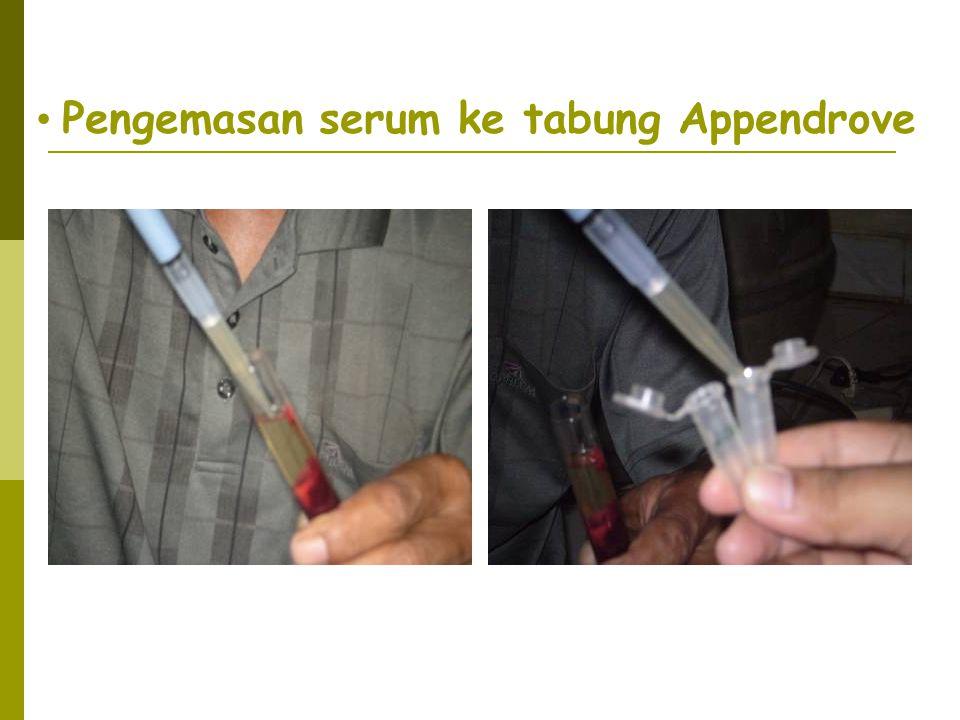 Pengemasan serum ke tabung Appendrove