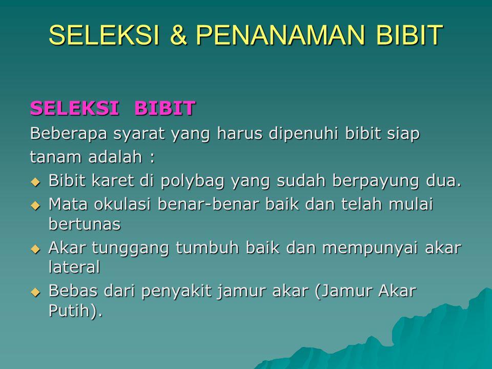 SELEKSI & PENANAMAN BIBIT