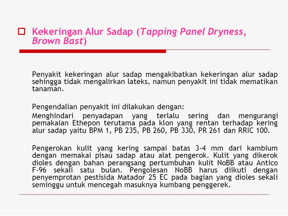 Kekeringan Alur Sadap (Tapping Panel Dryness, Brown Bast)