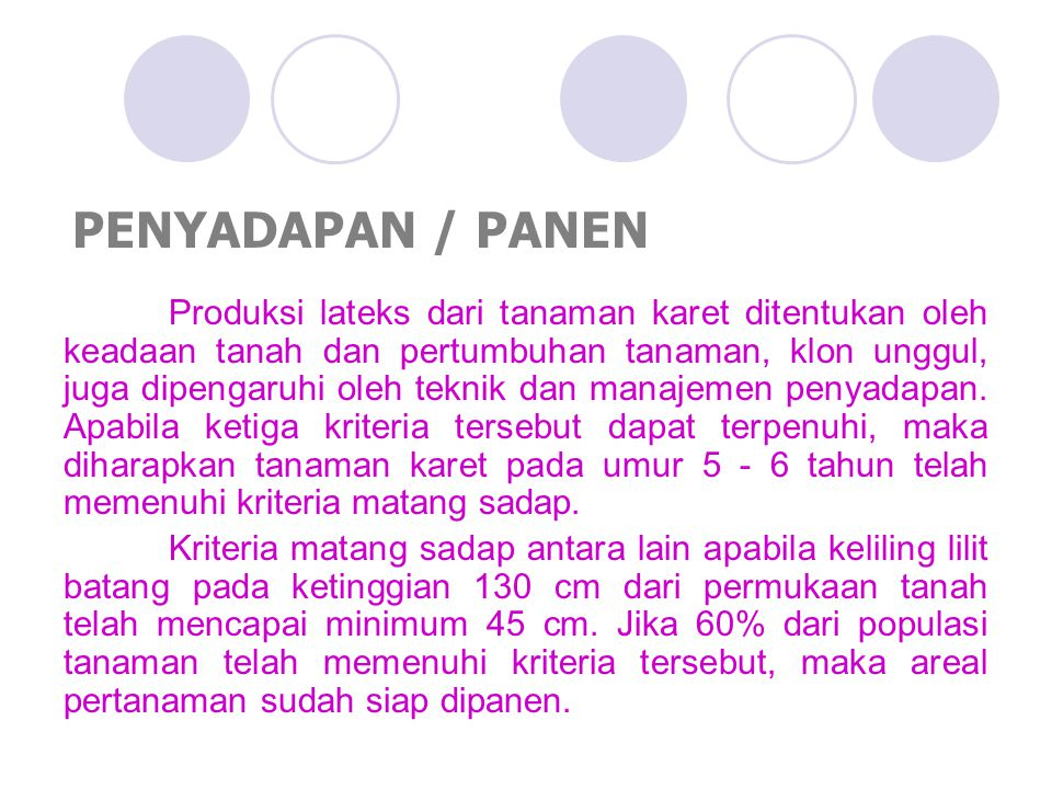 PENYADAPAN / PANEN