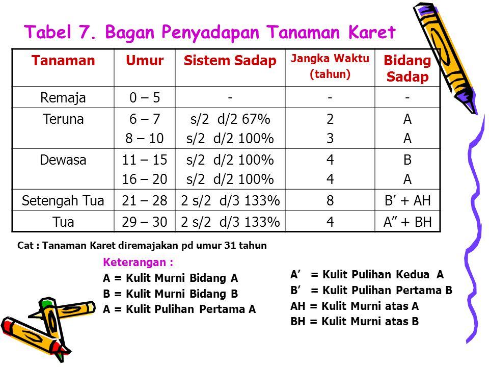 Tabel 7. Bagan Penyadapan Tanaman Karet