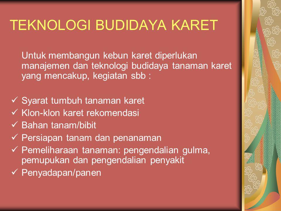 TEKNOLOGI BUDIDAYA KARET