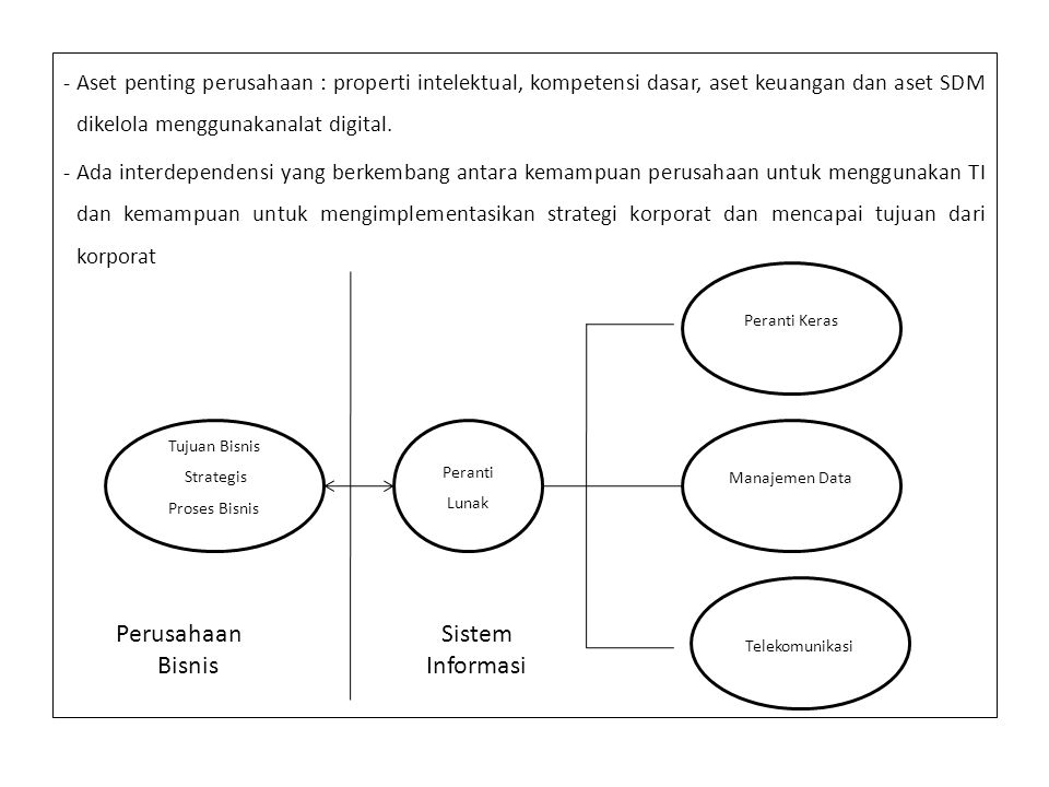 Perusahaan Bisnis Sistem Informasi