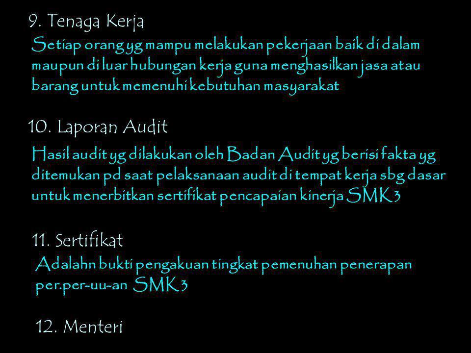 9. Tenaga Kerja 10. Laporan Audit 11. Sertifikat 12. Menteri