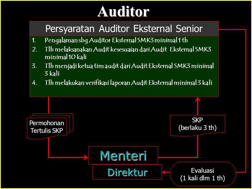 Persyaratan Auditor Eksternal Senior