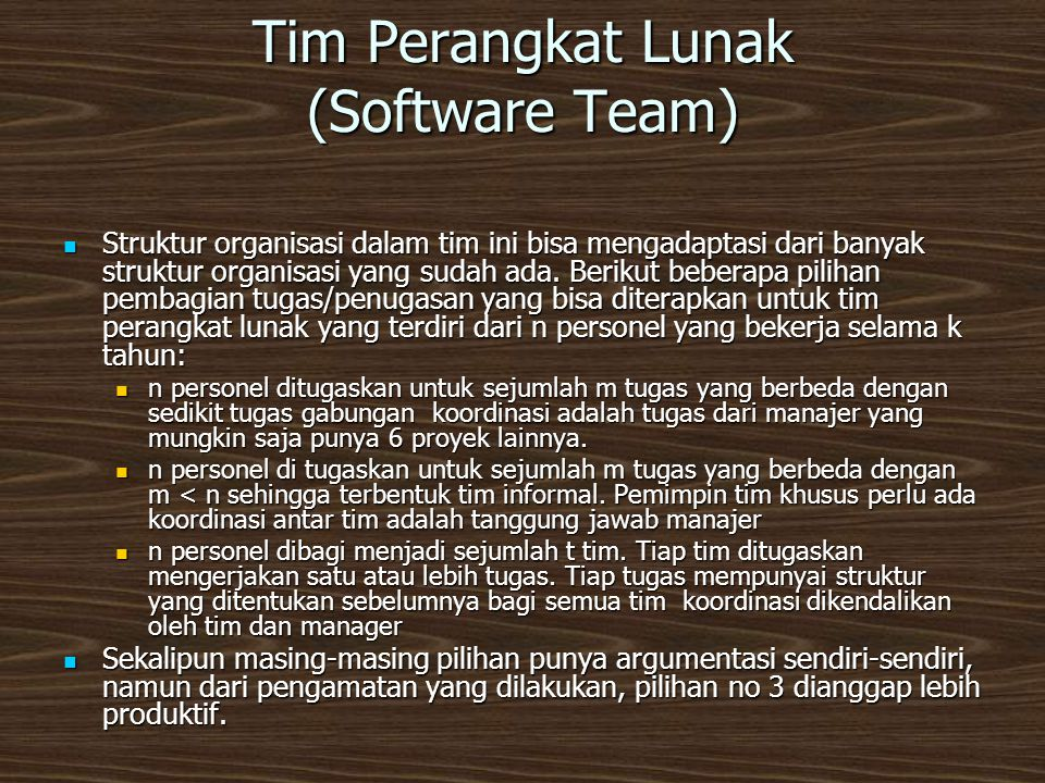 Tim Perangkat Lunak (Software Team)