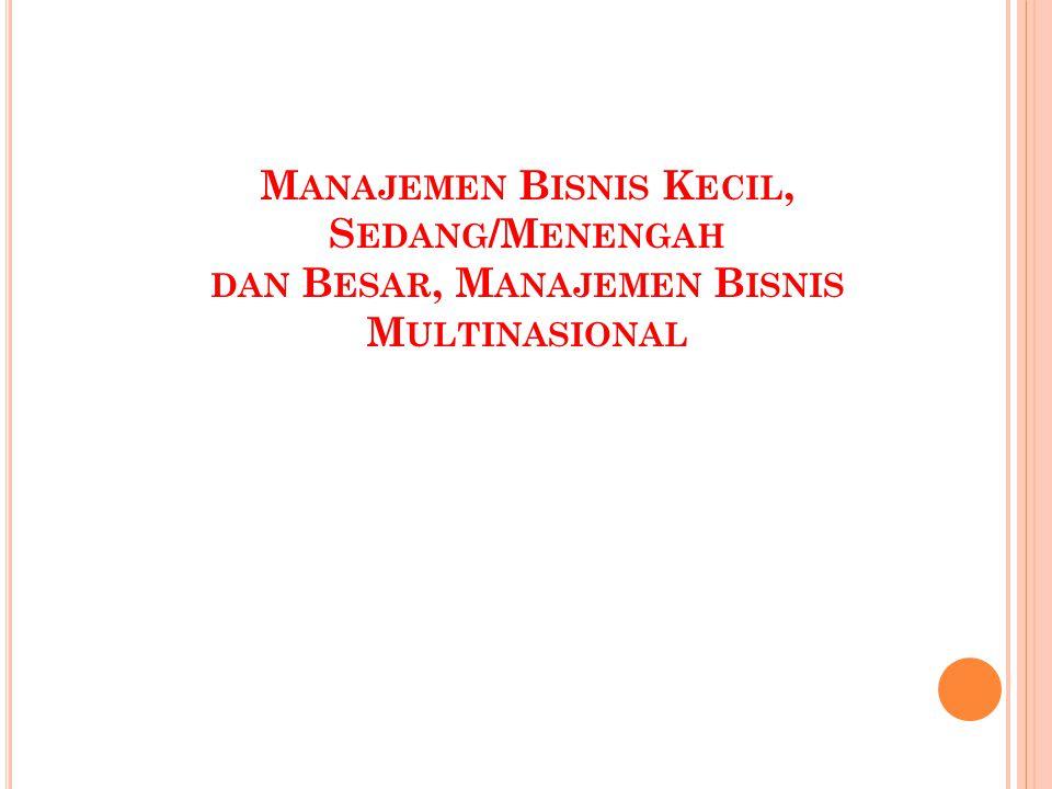 Manajemen Bisnis Kecil, Sedang/Menengah dan Besar, Manajemen Bisnis Multinasional