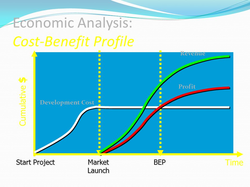 Economic Analysis: Cost-Benefit Profile