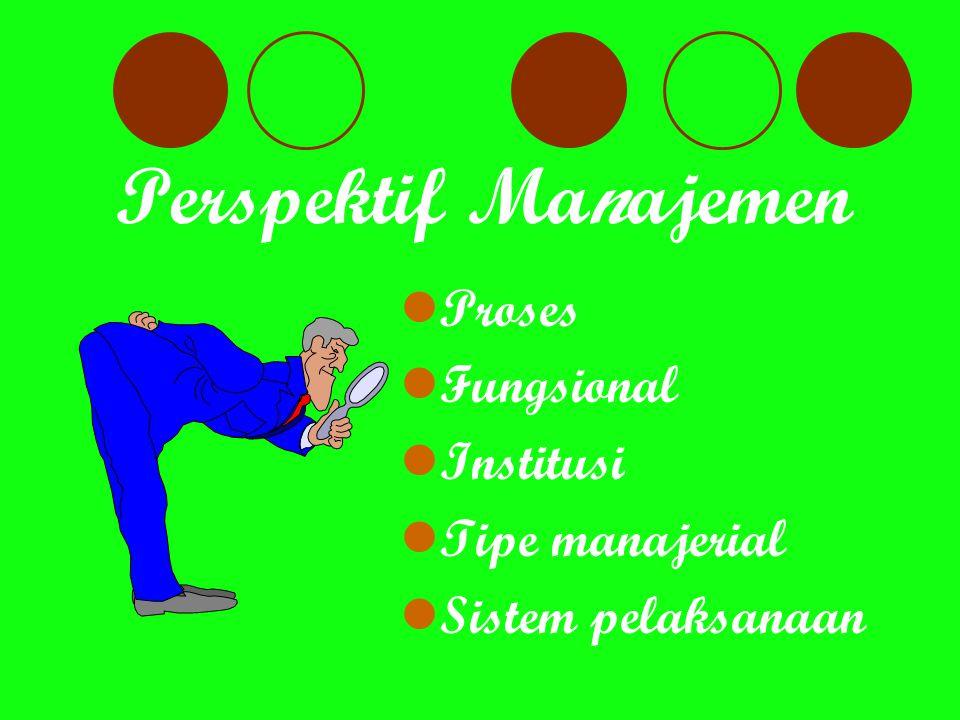 Perspektif Manajemen Proses Fungsional Institusi Tipe manajerial