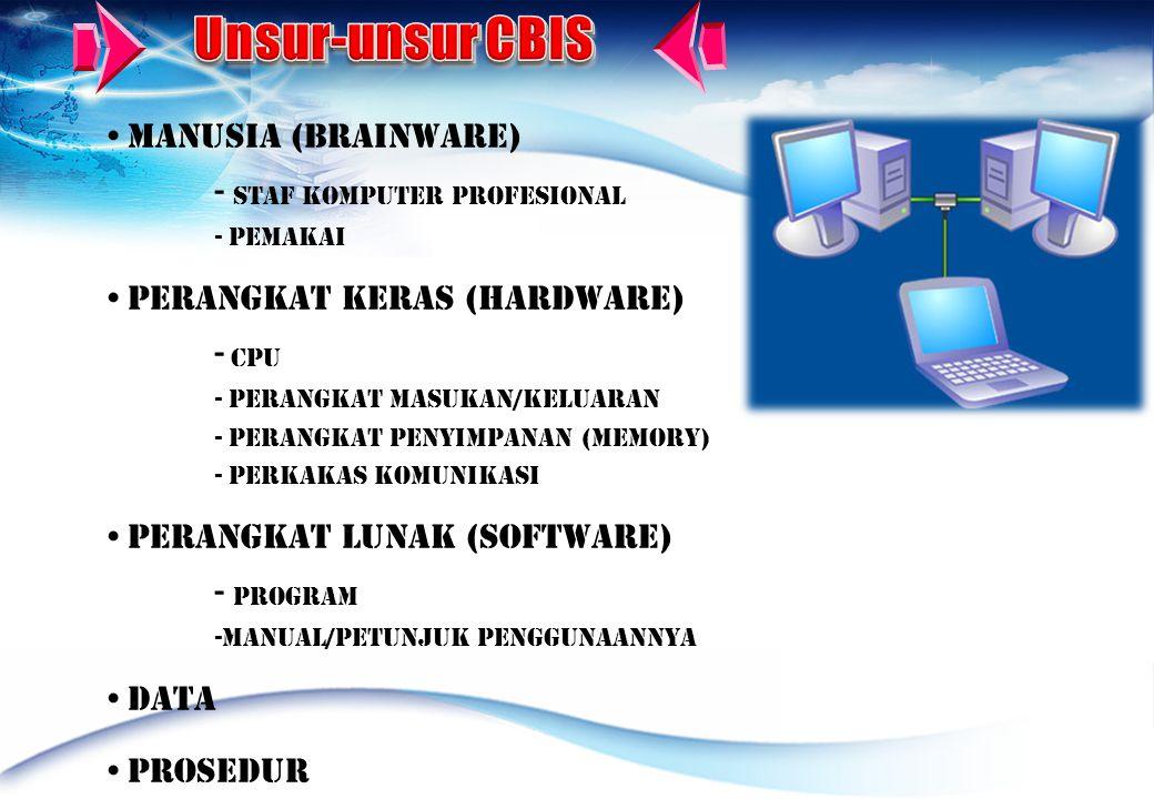 Unsur-unsur CBIS Manusia (Brainware) - Staf Komputer profesional
