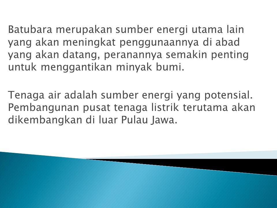 Batubara merupakan sumber energi utama lain yang akan meningkat penggunaannya di abad yang akan datang, peranannya semakin penting untuk menggantikan minyak bumi.