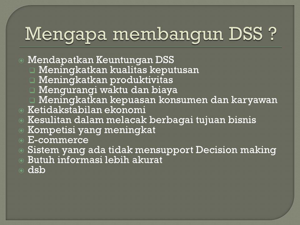 Mengapa membangun DSS Mendapatkan Keuntungan DSS