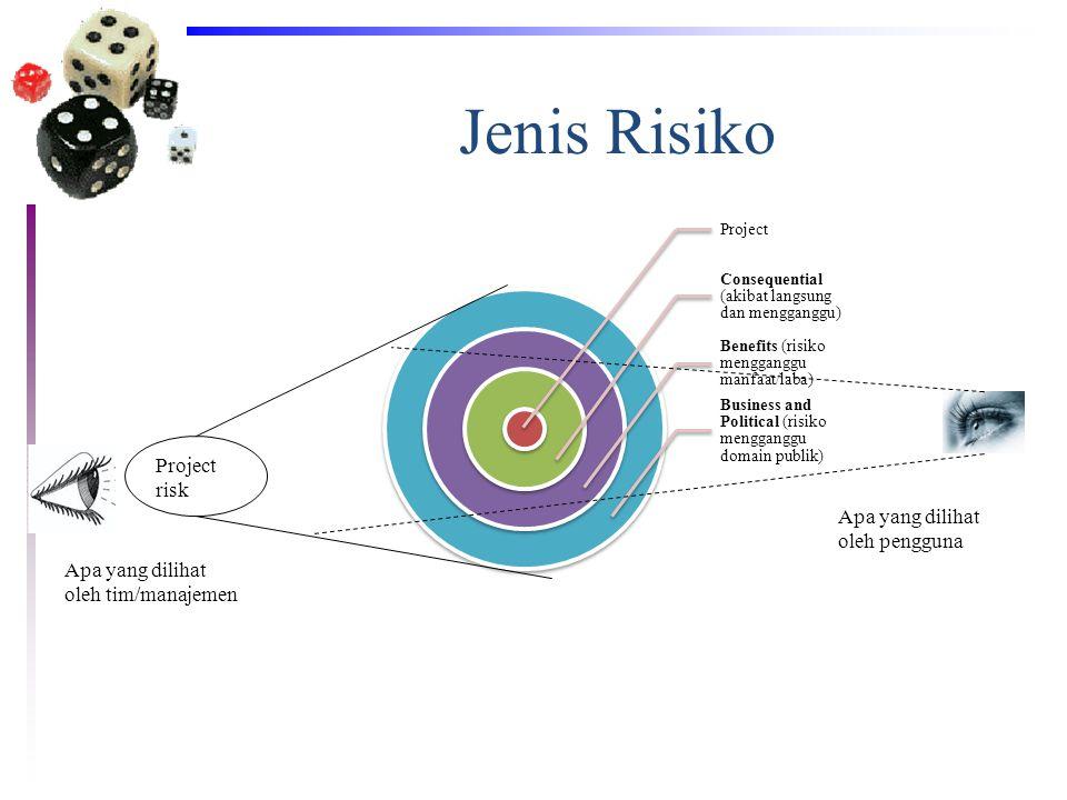 Jenis Risiko Project risk Apa yang dilihat oleh pengguna