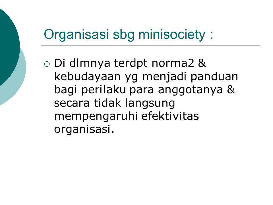 Organisasi sbg minisociety :