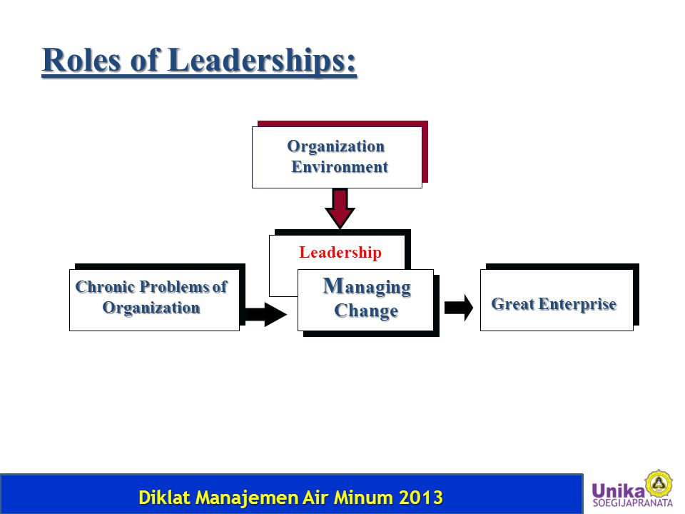 Roles of Leaderships: Managing Change Organization Environment