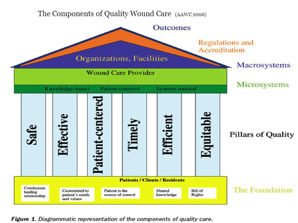 The Components of Quality Wound Care (AAWC 2006)