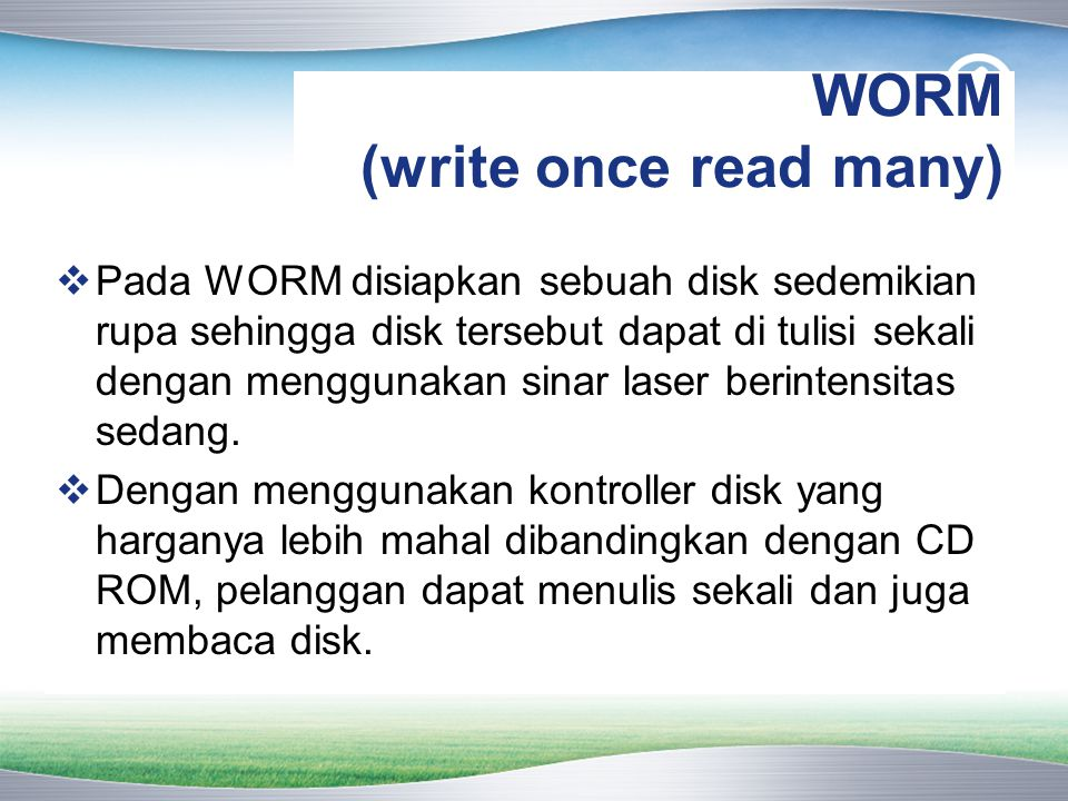 WORM (write once read many)