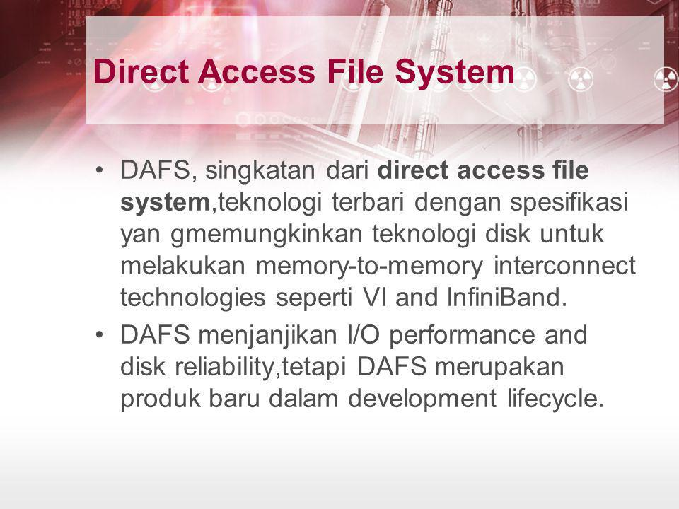 Direct Access File System